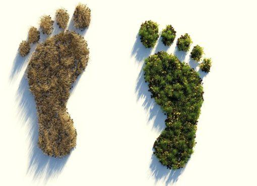 Réduire son impact sur le climat