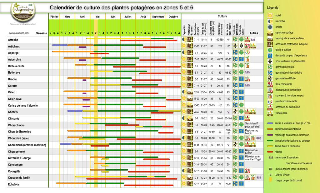 Calendrier de culture des plantes potagères en zone 5 et 6
